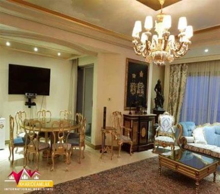 Buy-apartment-230-meters-in-Niavaran6